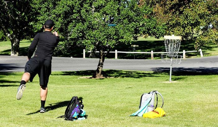 best disc golf putter