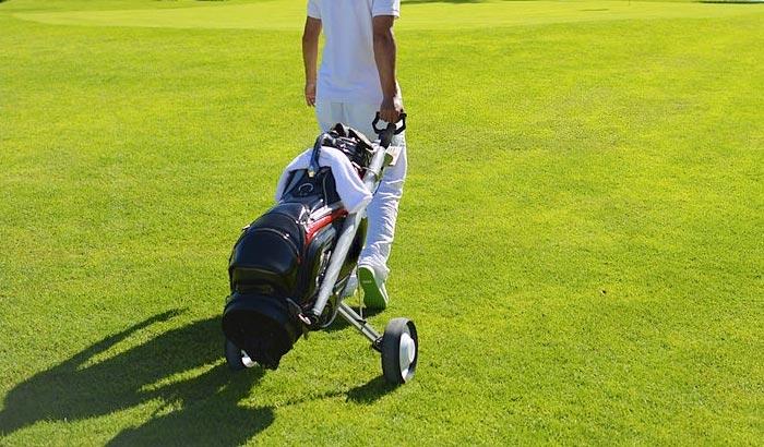 how to choose disc golf cart